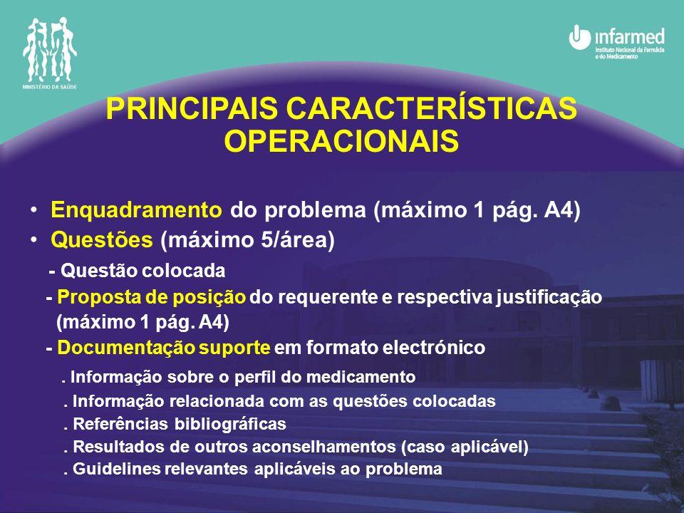 PRINCIPAIS CARACTERÍSTICAS OPERACIONAIS Enquadramento do problema (máximo 1 pág. A4) Questões (máximo 5/área) - Questão colocada - Proposta de posição