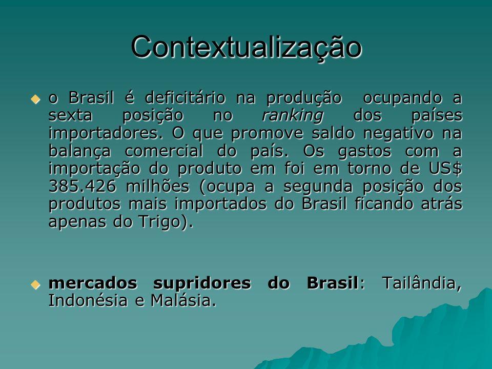 Contextualização o Brasil é deficitário na produção ocupando a sexta posição no ranking dos países importadores. O que promove saldo negativo na balan