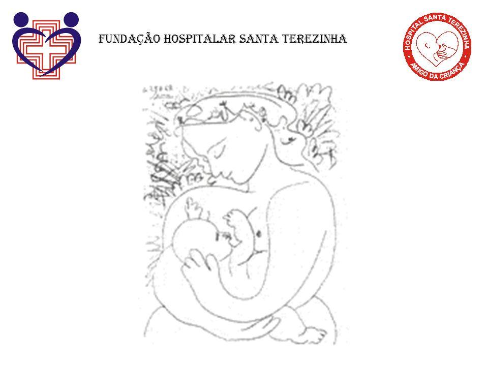 A FHSTE é um Hospital Amigo da Criança porque tem rotinas, normas e funcionários comprometidos com a meta de apoiar o aleitamento materno.