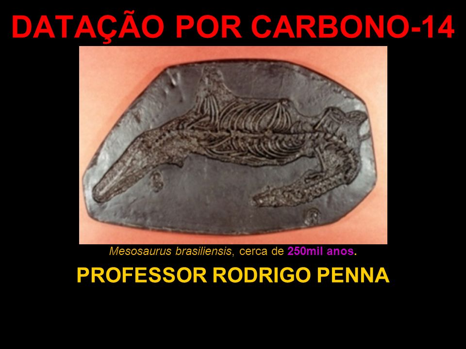 DATAÇÃO POR CARBONO-14 PROFESSOR RODRIGO PENNA Mesosaurus brasiliensis, cerca de 250mil anos.