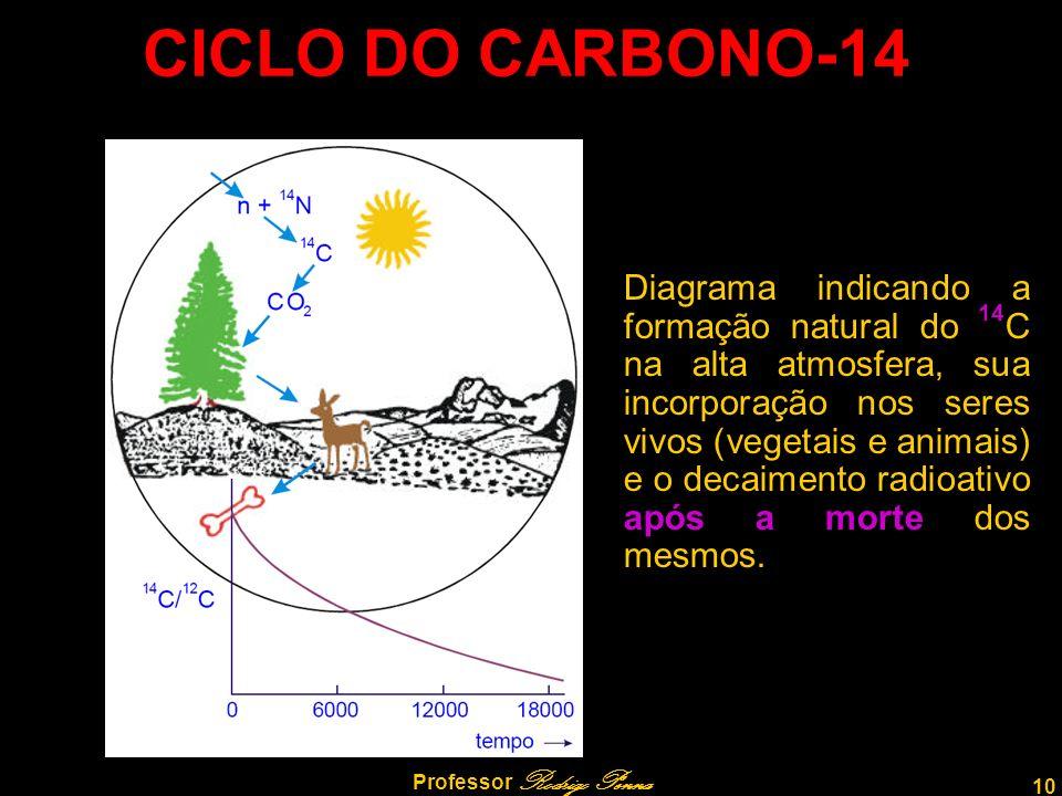 10 Professor Rodrigo Penna CICLO DO CARBONO-14 Diagrama indicando a formação natural do 14 C na alta atmosfera, sua incorporação nos seres vivos (vegetais e animais) e o decaimento radioativo após a morte dos mesmos.