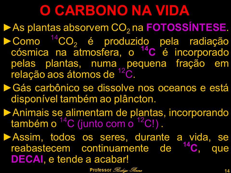 14 Professor Rodrigo Penna O CARBONO NA VIDA As plantas absorvem CO 2 na FOTOSSÍNTESE. Como 14 CO 2 é produzido pela radiação cósmica na atmosfera, o