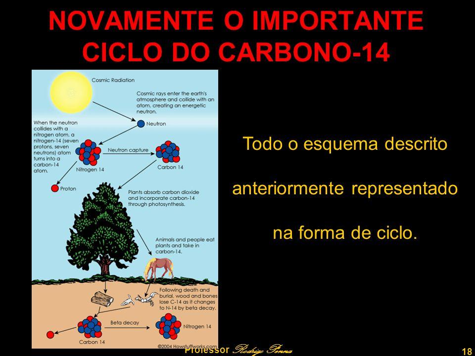 18 Professor Rodrigo Penna NOVAMENTE O IMPORTANTE CICLO DO CARBONO-14 Todo o esquema descrito anteriormente representado na forma de ciclo.