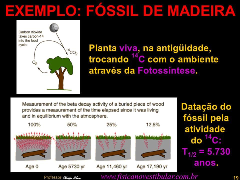 19 EXEMPLO: FÓSSIL DE MADEIRA Planta viva, na antigüidade, trocando 14 C com o ambiente através da Fotossíntese. Datação do fóssil pela atividade do 1