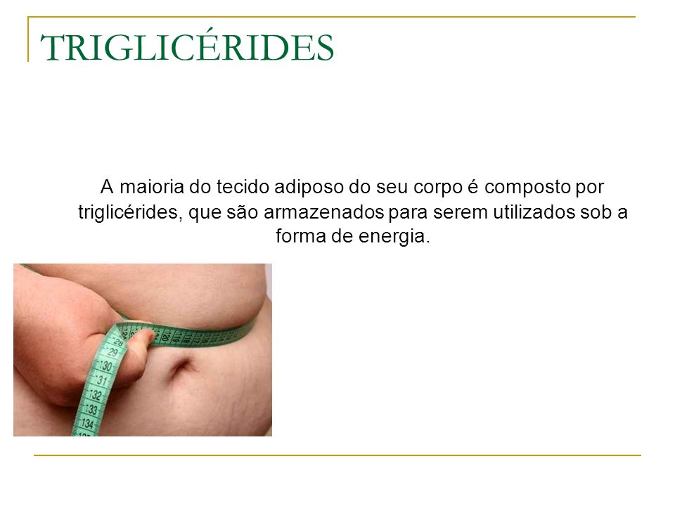 TRIGLICÉRIDES A maioria do tecido adiposo do seu corpo é composto por triglicérides, que são armazenados para serem utilizados sob a forma de energia.