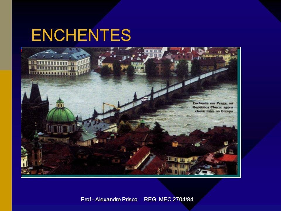 Prof - Alexandre Prisco REG. MEC 2704/84 ENCHENTES