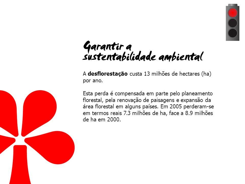 A desflorestação custa 13 milhões de hectares (ha) por ano.