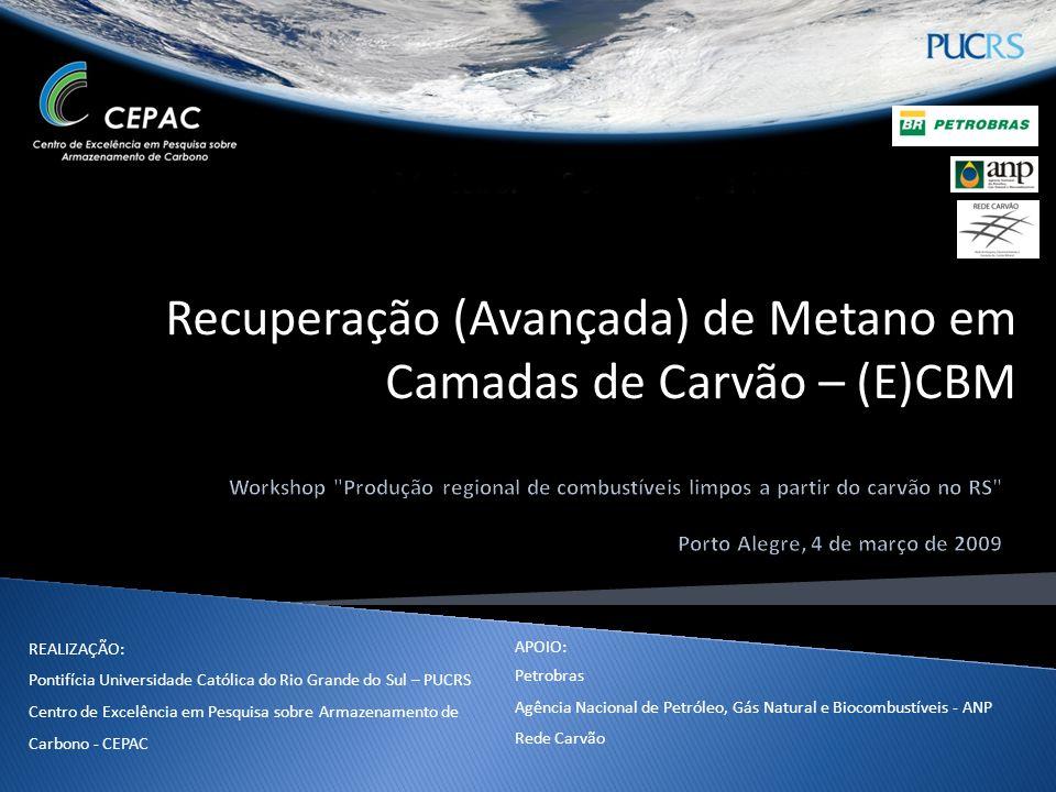 REALIZAÇÃO: Pontifícia Universidade Católica do Rio Grande do Sul – PUCRS Centro de Excelência em Pesquisa sobre Armazenamento de Carbono - CEPAC APOI
