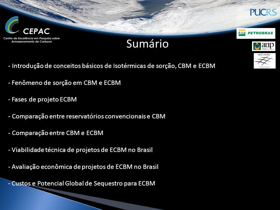 - Introdução de conceitos básicos de Isotérmicas de sorção, CBM e ECBM - Fenômeno de sorção em CBM e ECBM - Fases de projeto ECBM - Comparação entre reservatórios convencionais e CBM - Comparação entre CBM e ECBM - Viabilidade técnica de projetos de ECBM no Brasil - Avaliação econômica de projetos de ECBM no Brasil - Custos e Potencial Global de Sequestro para ECBM Sumário