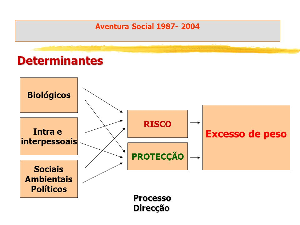 Sociais Ambientais Políticos Intra e interpessoais Biológicos Excesso de peso Determinantes RISCO PROTECÇÃO Aventura Social 1987- 2004 ProcessoDirecção