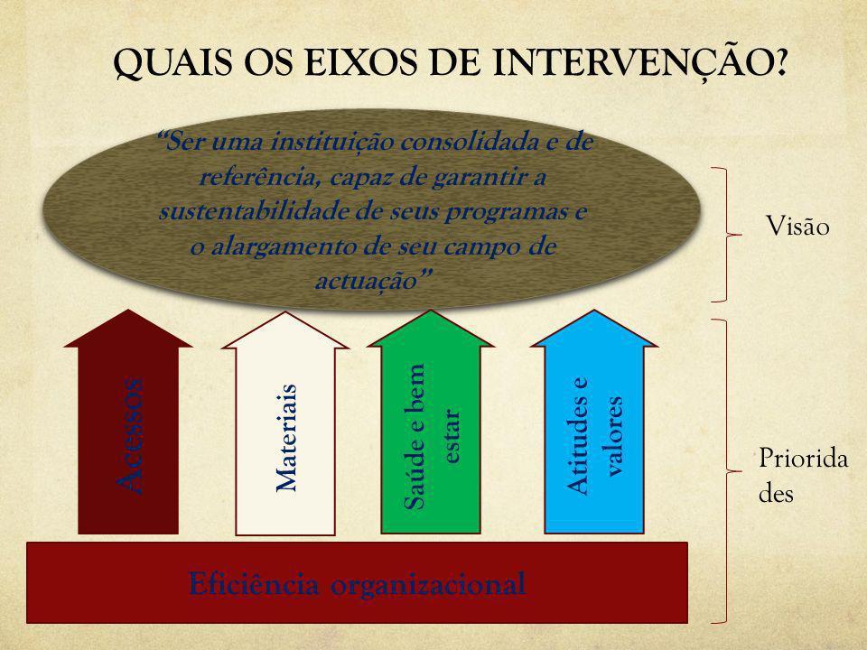 QUAIS OS EIXOS DE INTERVENÇÃO? Eficiência organizacional Ser uma instituição consolidada e de referência, capaz de garantir a sustentabilidade de seus