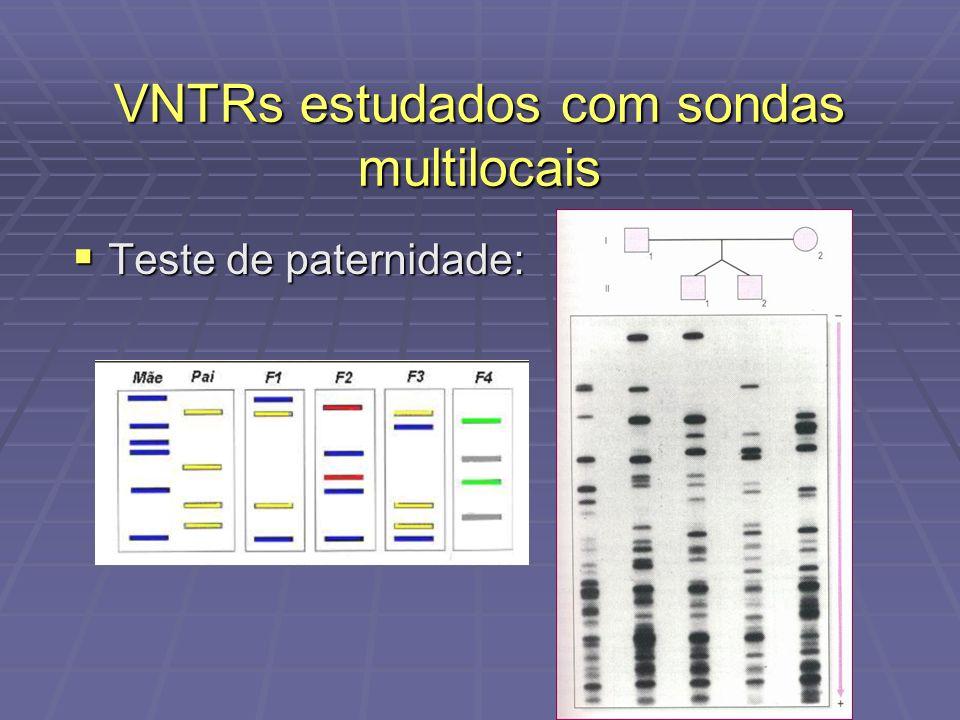 Teste de paternidade: Teste de paternidade: VNTRs estudados com sondas multilocais