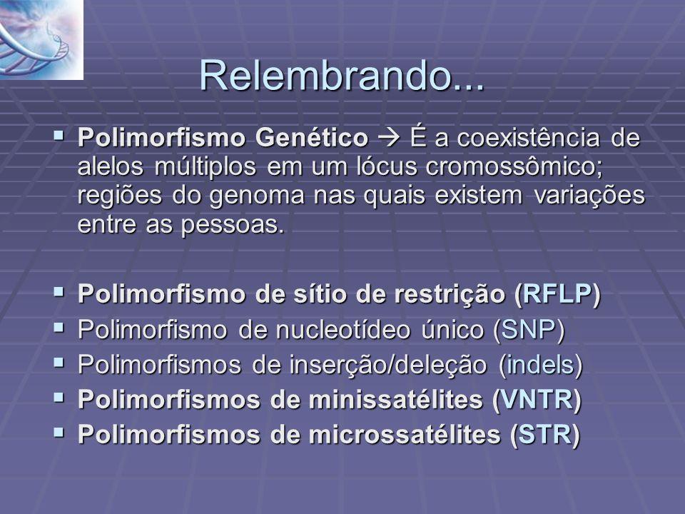 Relembrando... Polimorfismo Genético É a coexistência de alelos múltiplos em um lócus cromossômico; regiões do genoma nas quais existem variações entr