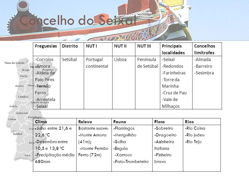 Concelho do Seixal FreguesiasDistritoNUT INUT IINUT III Principais localidades Concelhos limítrofes -Corroios -Amora -Aldeia de Paio Pires -Fernão Fer