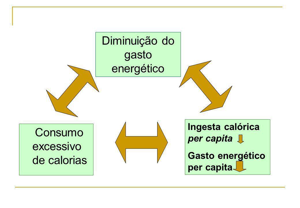 Consumo excessivo de calorias Diminuição do gasto energético Ingesta calórica per capita Gasto energético per capita