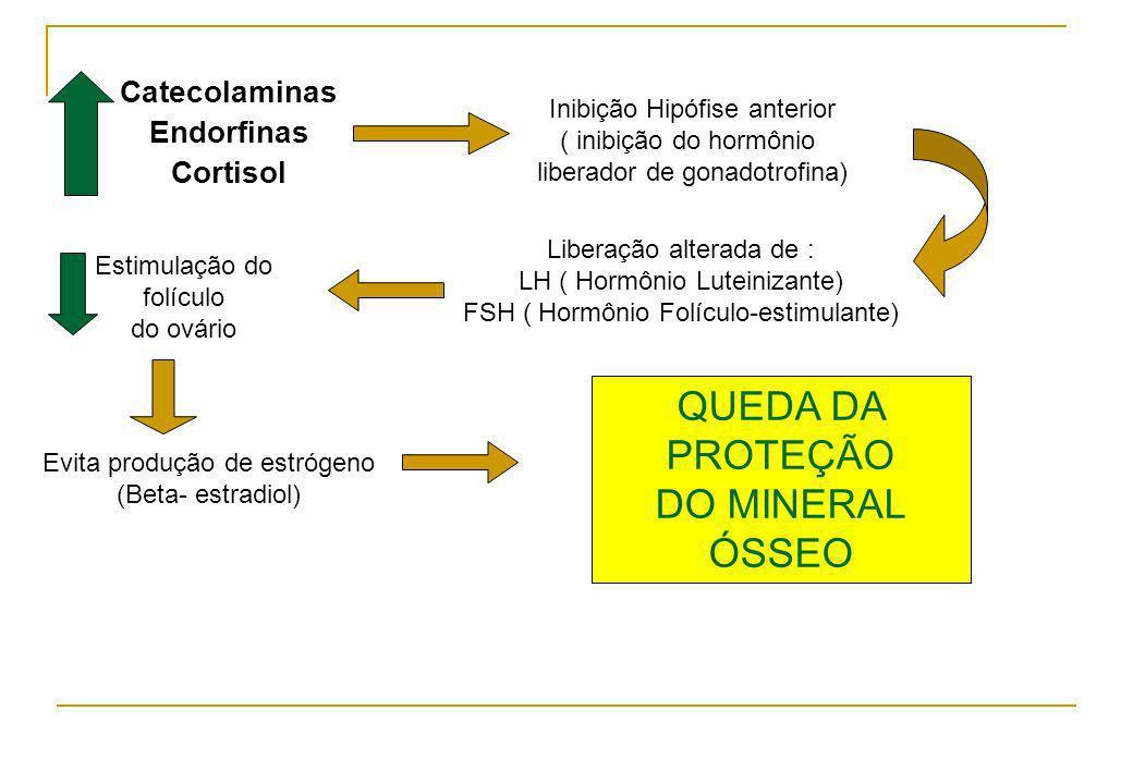 Catecolaminas Endorfinas Cortisol Inibição Hipófise anterior ( inibição do hormônio liberador de gonadotrofina) Liberação alterada de : LH ( Hormônio