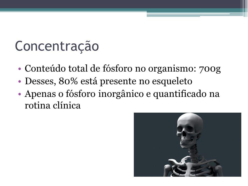 Concentração Conteúdo total de fósforo no organismo: 700g Desses, 80% está presente no esqueleto Apenas o fósforo inorgânico e quantificado na rotina