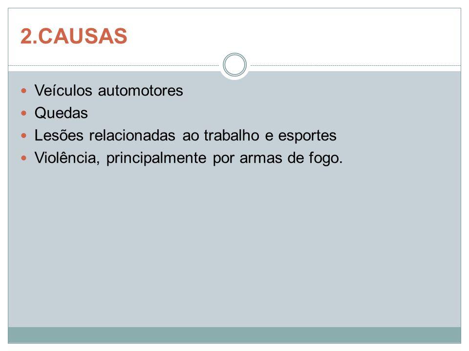 2.CAUSAS Veículos automotores Quedas Lesões relacionadas ao trabalho e esportes Violência, principalmente por armas de fogo.