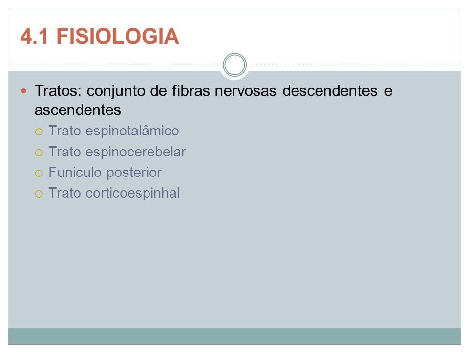 4.1 FISIOLOGIA Tratos: conjunto de fibras nervosas descendentes e ascendentes Trato espinotalâmico Trato espinocerebelar Funiculo posterior Trato cort