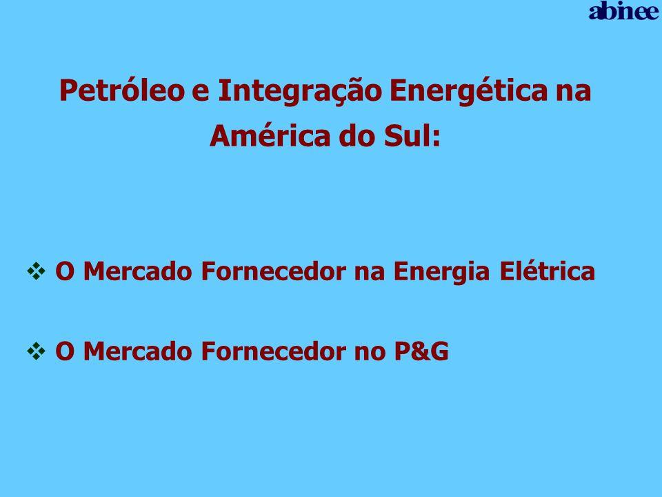 Petróleo e Integração Energética na América do Sul: O Mercado Fornecedor na Energia Elétrica O Mercado Fornecedor no P&G