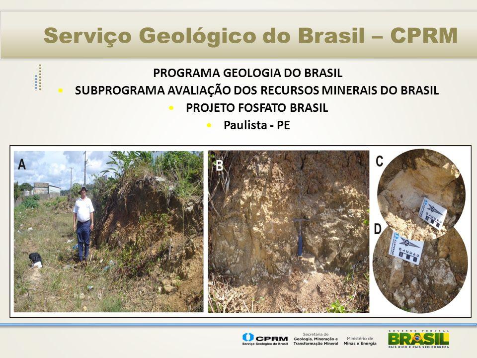 Serviço Geológico do Brasil – CPRM PROGRAMA GEOLOGIA DO BRASIL SUBPROGRAMA AVALIAÇÃO DOS RECURSOS MINERAIS DO BRASIL PROJETO FOSFATO BRASIL Paulista -