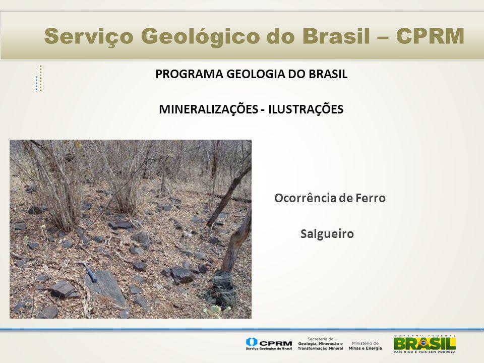 Serviço Geológico do Brasil – CPRM PROGRAMA GEOLOGIA DO BRASIL MINERALIZAÇÕES - ILUSTRAÇÕES Ocorrência de Ferro Salgueiro