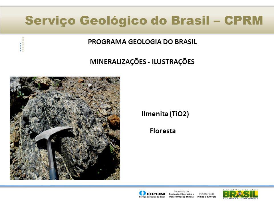 Serviço Geológico do Brasil – CPRM PROGRAMA GEOLOGIA DO BRASIL MINERALIZAÇÕES - ILUSTRAÇÕES Ilmenita (TiO2) Floresta