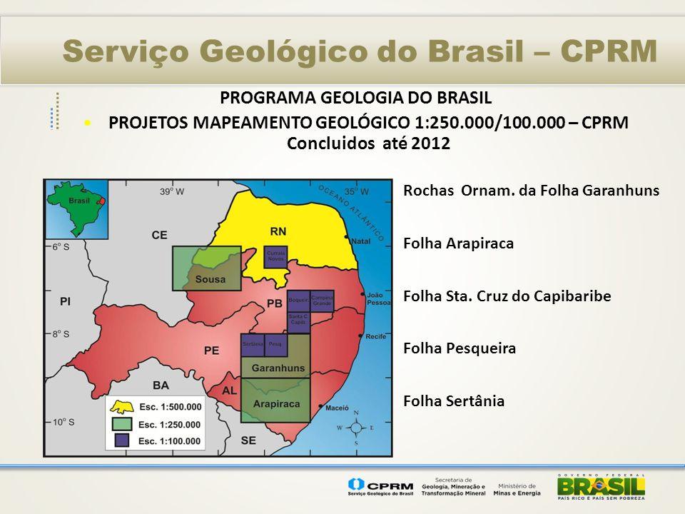 Serviço Geológico do Brasil – CPRM PROGRAMA GEOLOGIA DO BRASIL Investimentos 2003-2012 Levantamentos aerogeofísicos ---- R$ 3,5 milhões Levantamentos geológicos -----------R$ 3 milhões Recursos minerais ----------------------R$ 1,2 milhões T O T A L - R$ 7,7 milhões