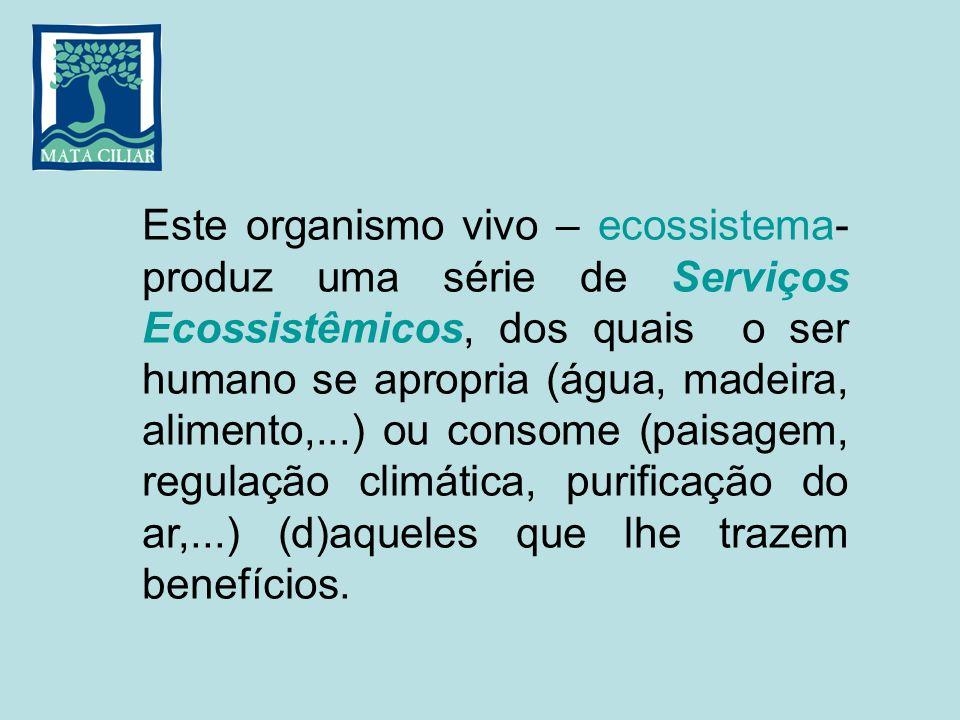 Este organismo vivo – ecossistema- produz uma série de Serviços Ecossistêmicos, dos quais o ser humano se apropria (água, madeira, alimento,...) ou co