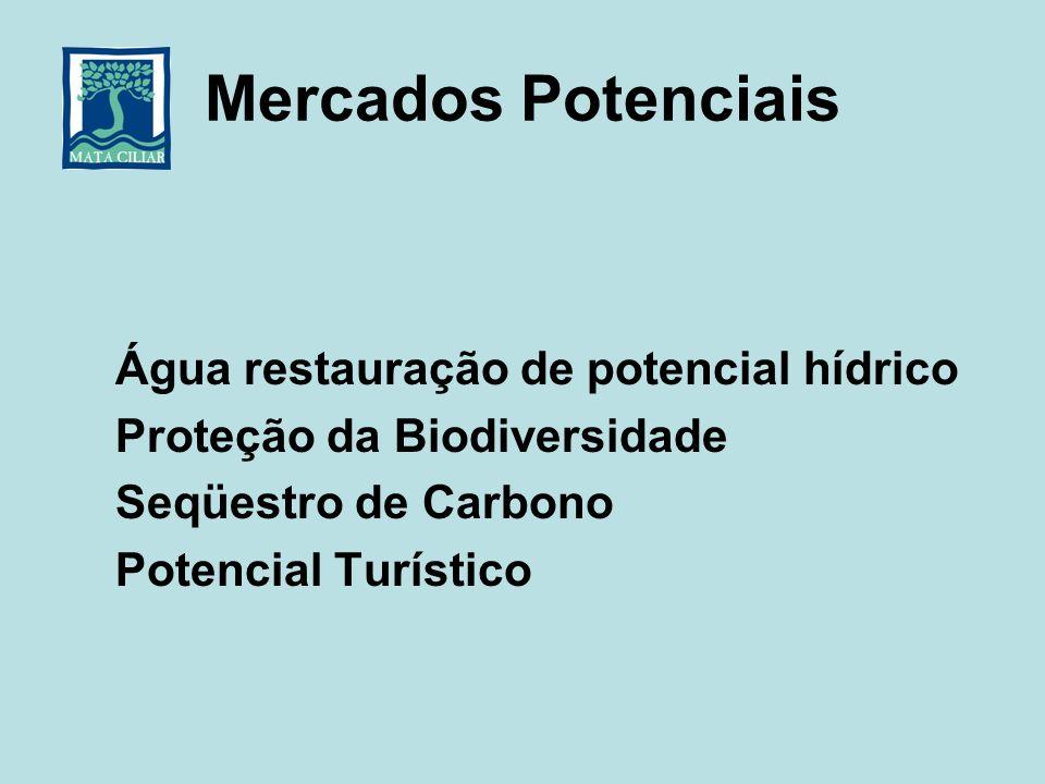 Mercados Potenciais Água restauração de potencial hídrico Proteção da Biodiversidade Seqüestro de Carbono Potencial Turístico