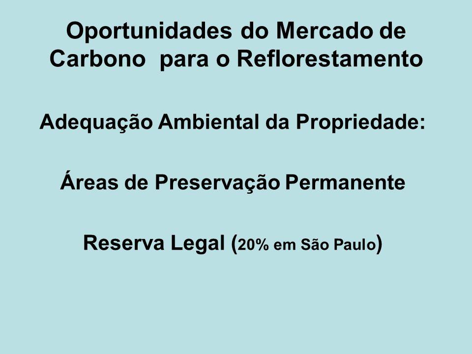 Oportunidades do Mercado de Carbono para o Reflorestamento Adequação Ambiental da Propriedade: Áreas de Preservação Permanente Reserva Legal ( 20% em