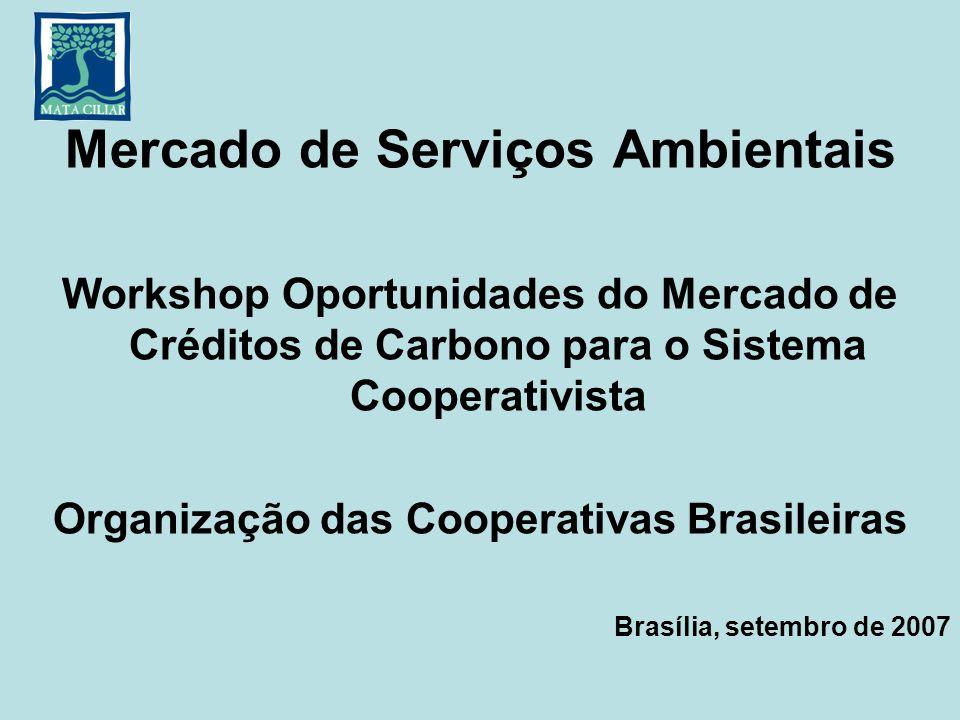 Mercado de Serviços Ambientais Workshop Oportunidades do Mercado de Créditos de Carbono para o Sistema Cooperativista Organização das Cooperativas Bra