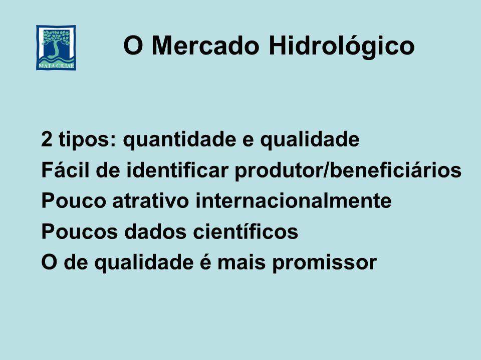O Mercado Hidrológico 2 tipos: quantidade e qualidade Fácil de identificar produtor/beneficiários Pouco atrativo internacionalmente Poucos dados cient