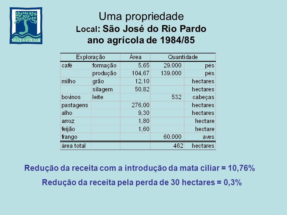 Uma propriedade Local : São José do Rio Pardo ano agrícola de 1984/85 Redução da receita com a introdução da mata ciliar = 10,76% Redução da receita p
