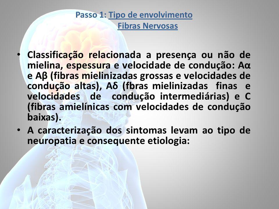 Passo 1: Tipo de envolvimento Fibras Nervosas Classificação relacionada a presença ou não de mielina, espessura e velocidade de condução: Aα e Aβ (fib