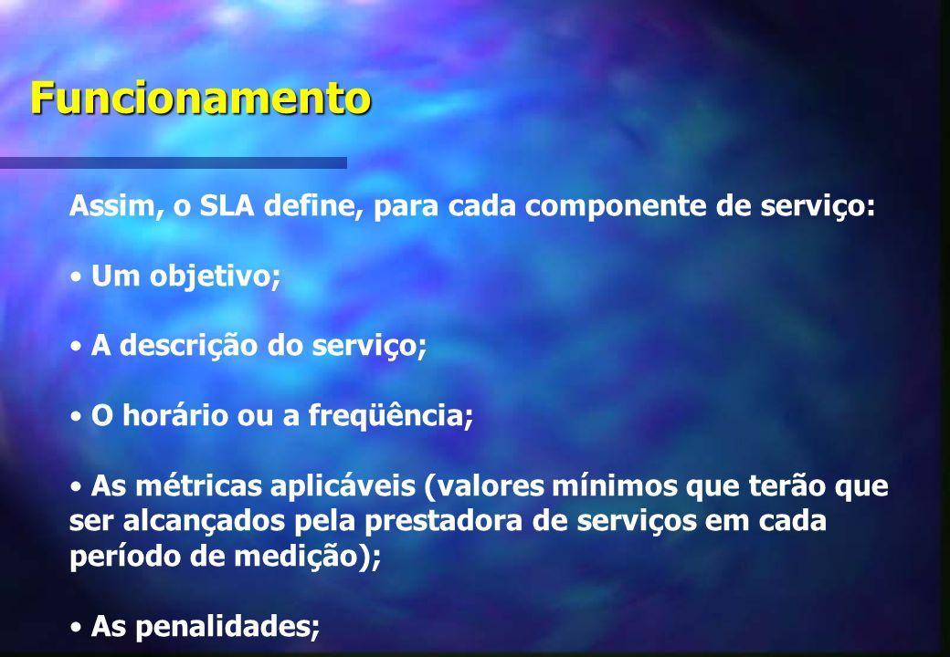 Assim, o SLA define, para cada componente de serviço: Um objetivo; A descrição do serviço; O horário ou a freqüência; As métricas aplicáveis (valores mínimos que terão que ser alcançados pela prestadora de serviços em cada período de medição); As penalidades; Funcionamento