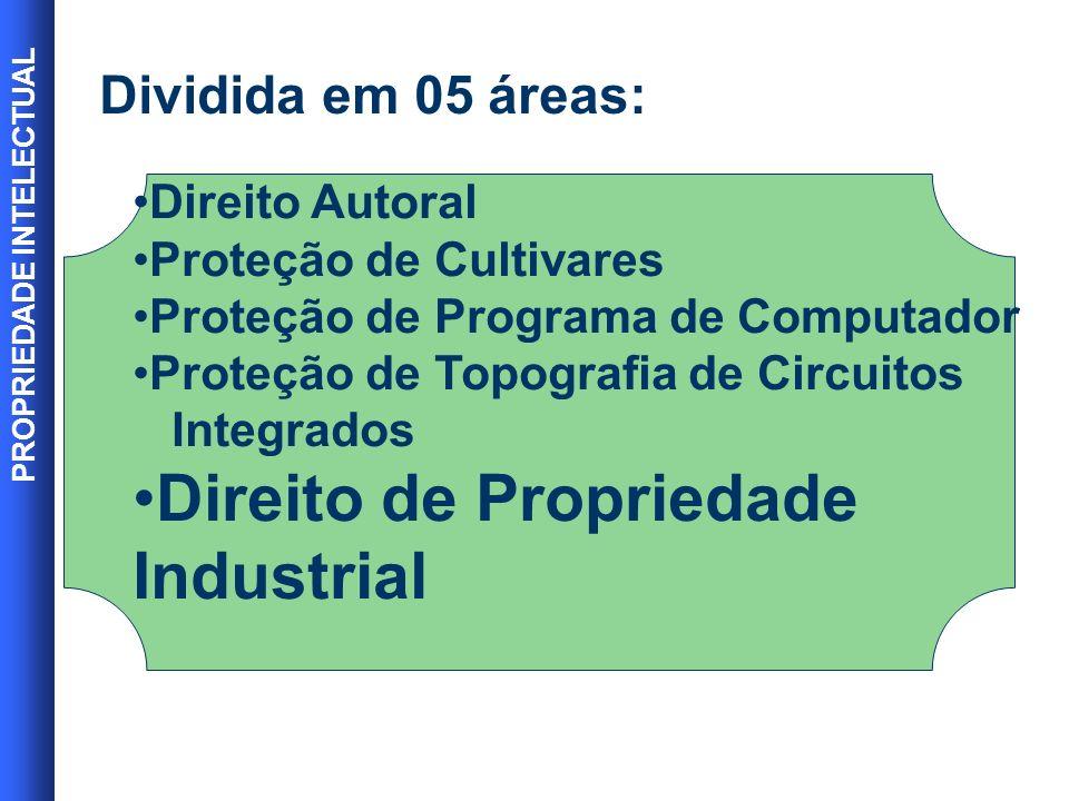 PROPRIEDADE INTELECTUAL 3 A Marca Um dos mais importantes patrimônios da empresa.