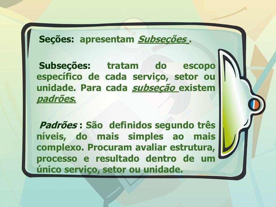 Seções: apresentam Subseções. Subseções: tratam do escopo específico de cada serviço, setor ou unidade. Para cada subseção existem padrões. Padrões :