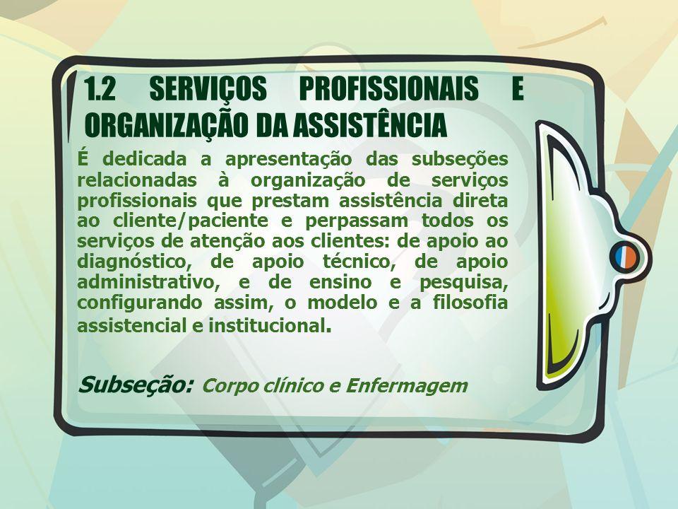 É dedicada a apresentação das subseções relacionadas à organização de serviços profissionais que prestam assistência direta ao cliente/paciente e perp