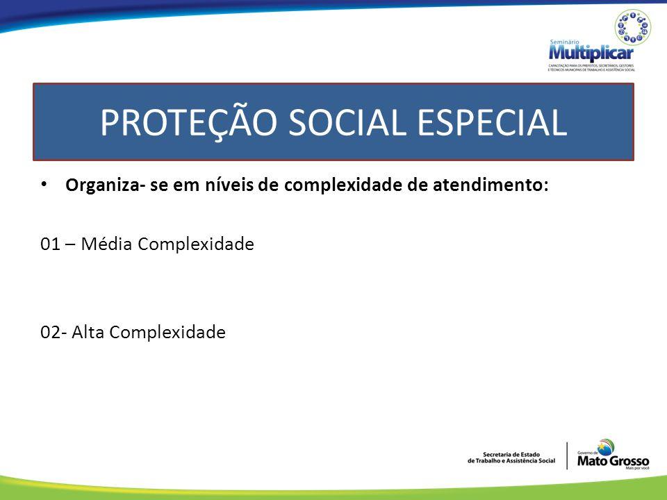 Organiza- se em níveis de complexidade de atendimento: 01 – Média Complexidade 02- Alta Complexidade PROTEÇÃO SOCIAL ESPECIAL