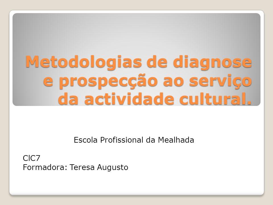 Metodologias de diagnose e prospecção ao serviço da actividade cultural. Escola Profissional da Mealhada ClC7 Formadora: Teresa Augusto