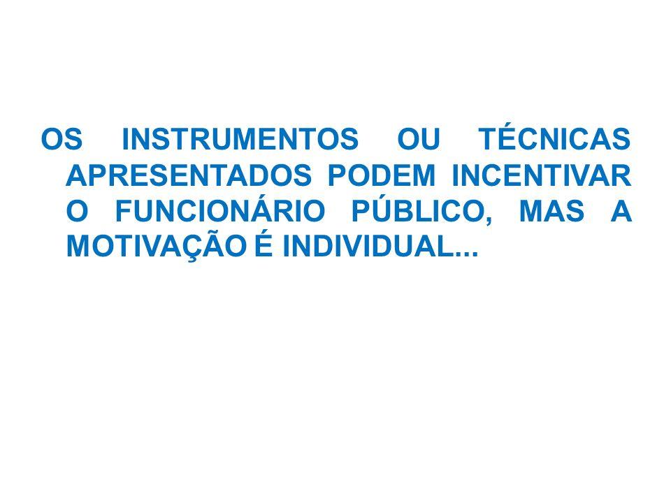 OS INSTRUMENTOS OU TÉCNICAS APRESENTADOS PODEM INCENTIVAR O FUNCIONÁRIO PÚBLICO, MAS A MOTIVAÇÃO É INDIVIDUAL...