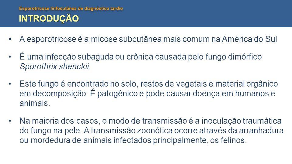 Esporotricose linfocutânea de diagnóstico tardio INTRODUÇÃO A esporotricose é a micose subcutânea mais comum na América do Sul É uma infecção subaguda