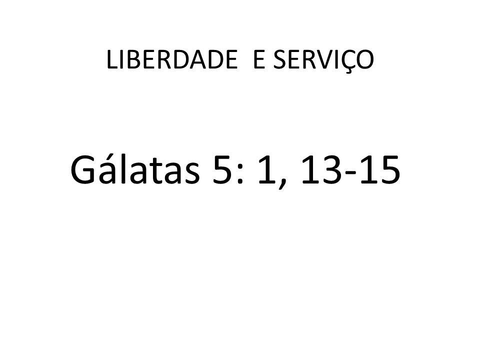 ELEMENTOS 1.LIBERDADE E TESTEMUNHO 2.LIBERDADE E O ESPÍRITO 3.LIBERDADE E SERVIÇO 4.LIBERDADE E PRÁTICA DO BEM