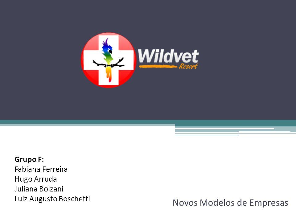Novos Modelos de Empresas Grupo F: Fabiana Ferreira Hugo Arruda Juliana Bolzani Luiz Augusto Boschetti
