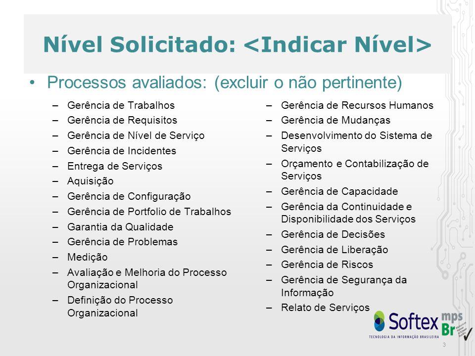 3 Nível Solicitado: –Gerência de Trabalhos –Gerência de Requisitos –Gerência de Nível de Serviço –Gerência de Incidentes –Entrega de Serviços –Aquisiç