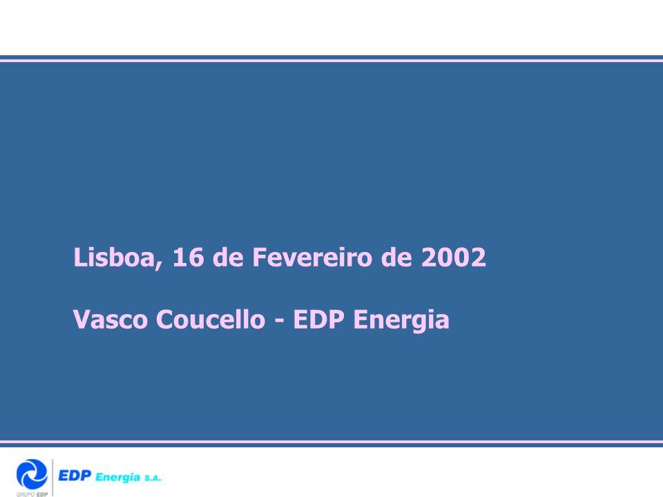 Lisboa, 16 de Fevereiro de 2002 Vasco Coucello - EDP Energia