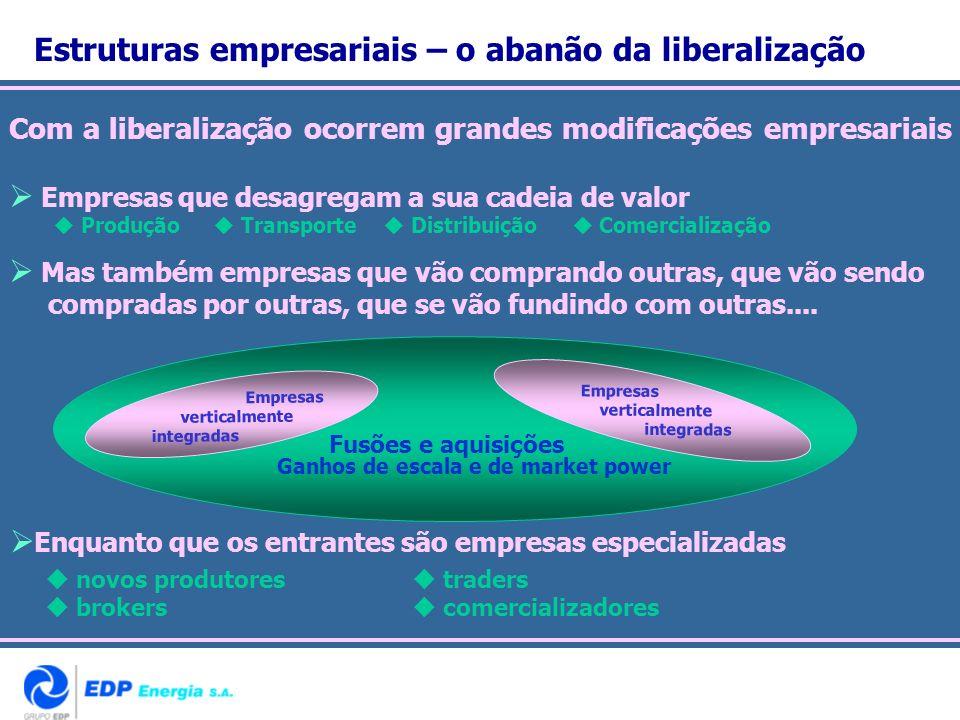 Com a liberalização ocorrem grandes modificações empresariais Empresas que desagregam a sua cadeia de valor Produção Transporte Distribuição Comercial