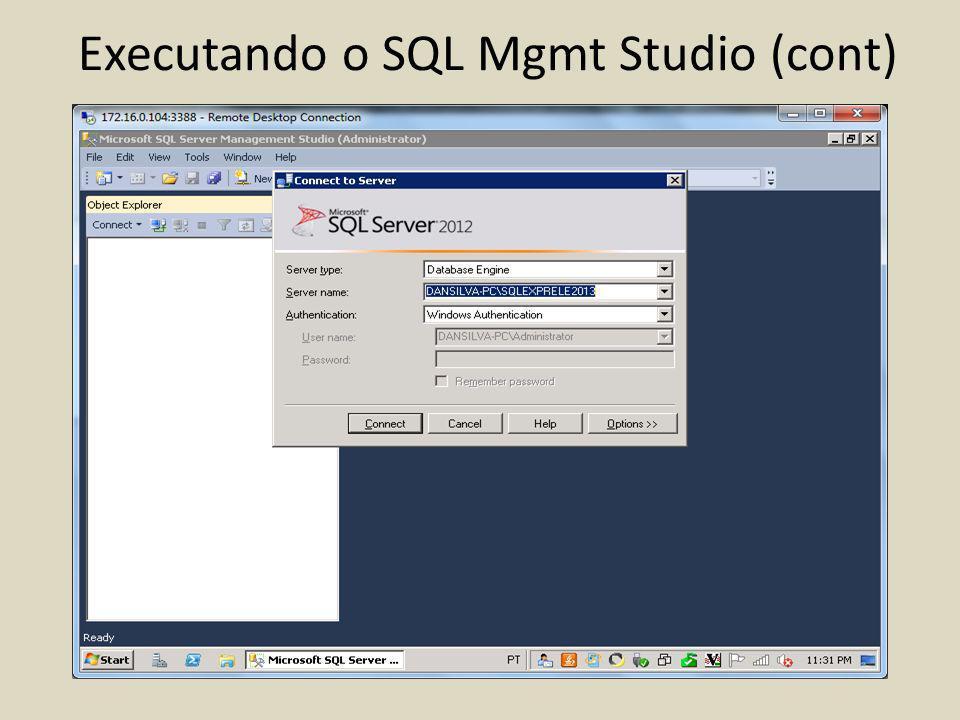 Executando o SQL Mgmt Studio (cont)