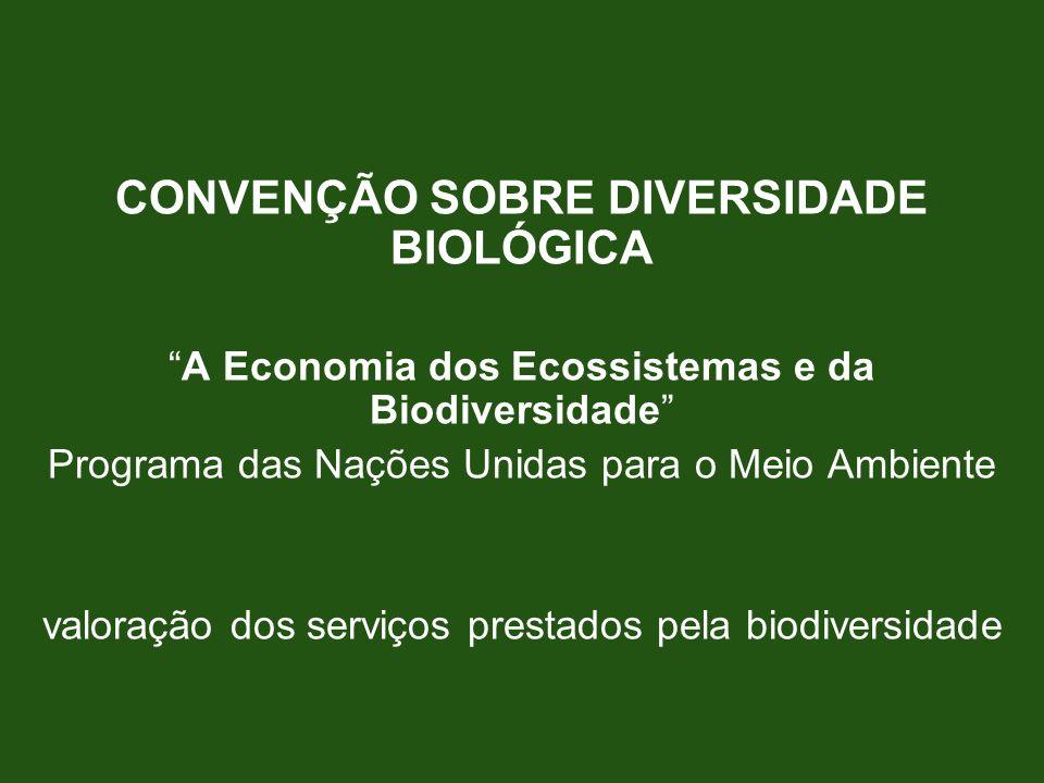 CONVENÇÃO SOBRE DIVERSIDADE BIOLÓGICA A Economia dos Ecossistemas e da Biodiversidade Programa das Nações Unidas para o Meio Ambiente valoração dos se
